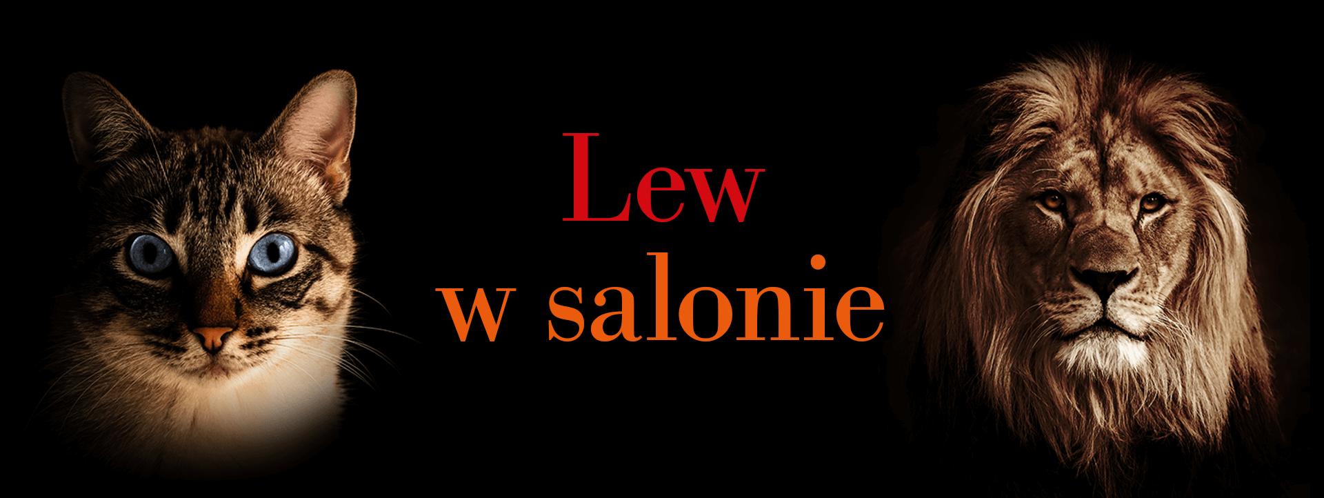Lew w salonie